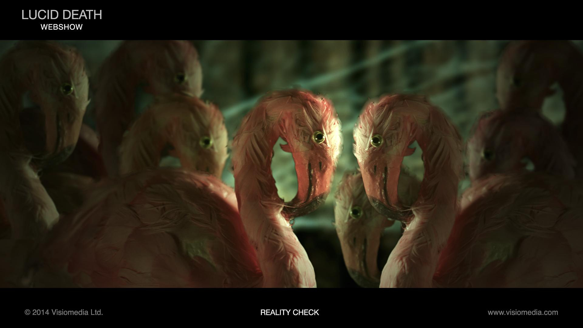 reality_check_flamingos_1920x1080