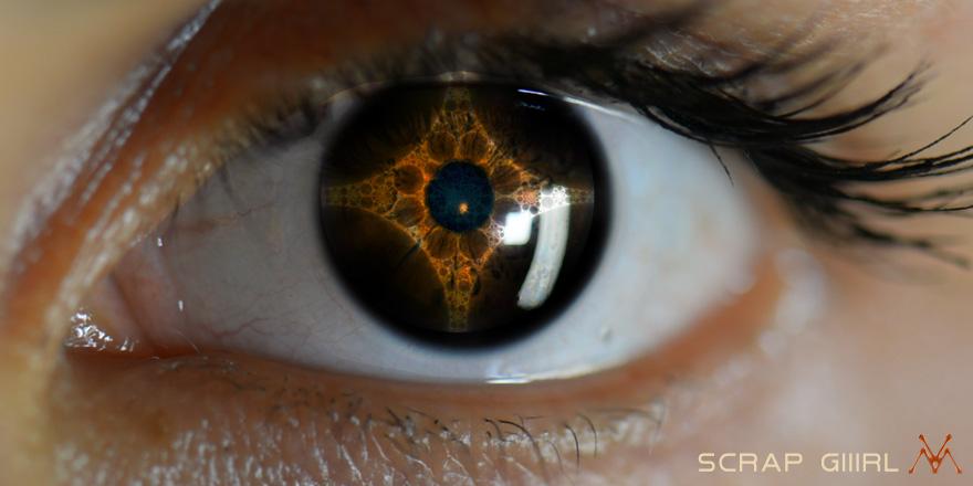 04302_nant_eye_880x440